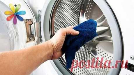 Чистим стиральную машину – Все буде добре. Выпуск 803 от 04.05.16