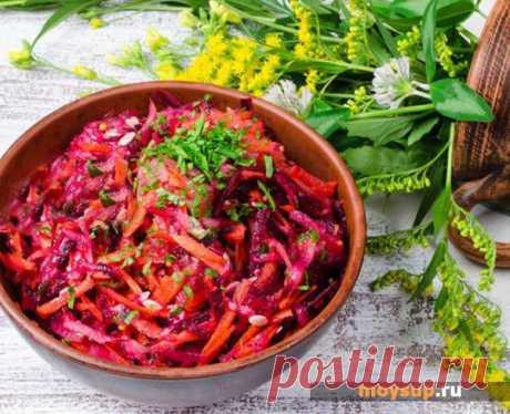 Las ensaladas con la remolacha fresca, la zanahoria y la manzana para cada día