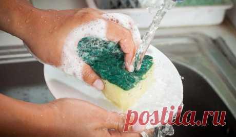 Всегда считала, что губкой можно только посуду мыть, а потом посмотрела, что с ней делает свекровь: век живи – век учись