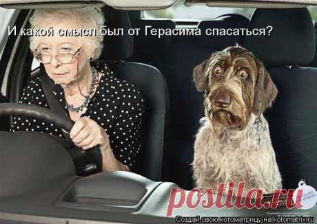 смешные бабушки фото: 49 тыс изображений найдено в Яндекс.Картинках