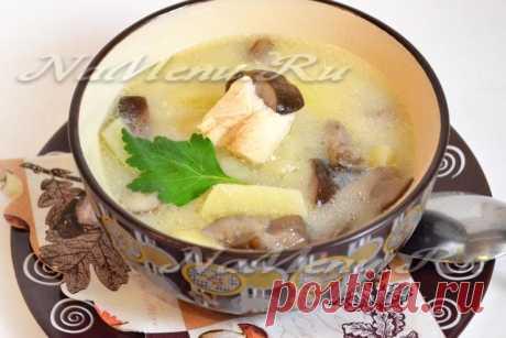 Грибной суп с курицей и плавленным сыром