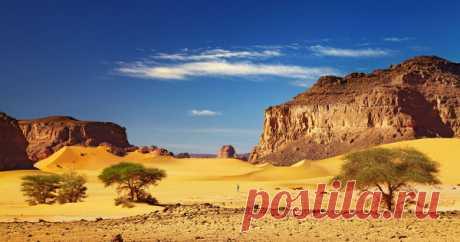 Чтопохоронила подсобой пустыня Сахара Когда речь заходит обэтой пустыне, всем сразу представляются бескрайние пески иизнуряющая жара.