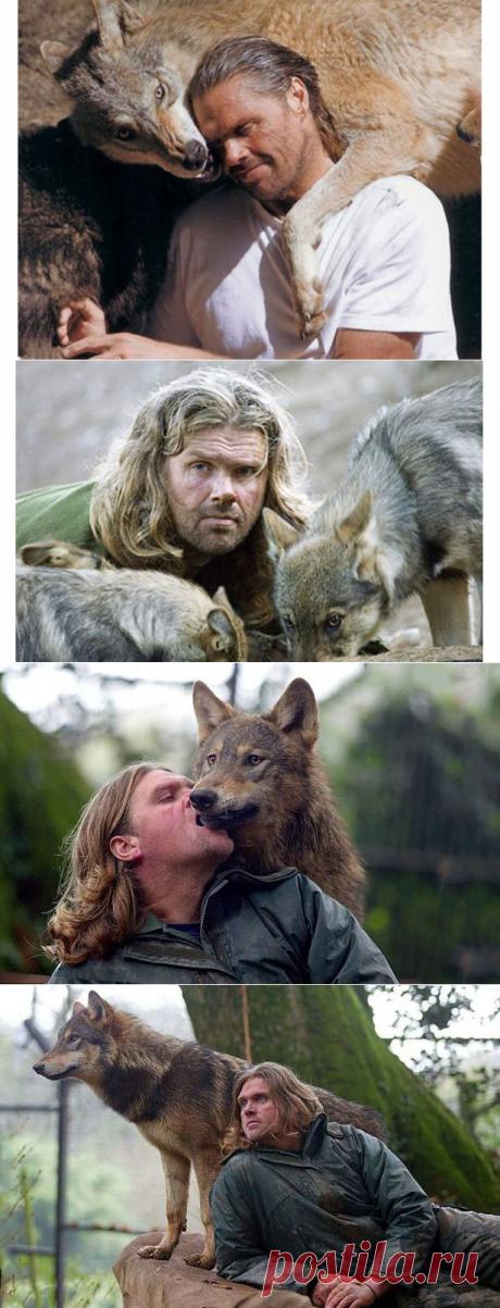 Жизнь с волками: как бывший морпех стал вожаком волчьей стаи | Планета зверей | Яндекс Дзен