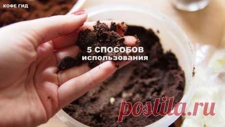 Не выбрасывайте кофейный жмых (часть 3) | КОФЕ ГИД | Яндекс Дзен