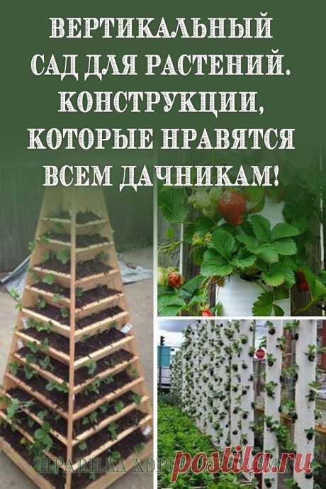 Вертикальный сад для растений. Конструкции, которые нравятся всем дачникам!