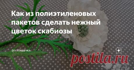 Как из полиэтиленовых пакетов сделать нежный цветок скабиозы
