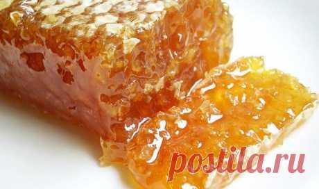 Мёд в сотах — польза и вред, а также лечение от 15 недугов