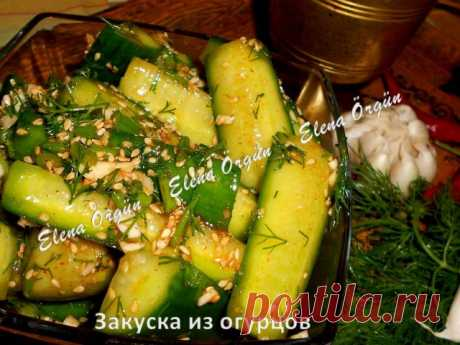 Закуска из огурцов   Русская кухня