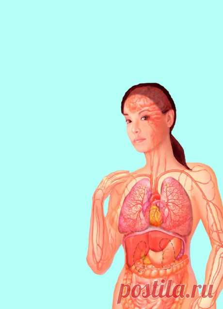 Самодиагностика: 6 экспресс-тестов для определения проблем со здоровьем - Домашняя аптечка - медиаплатформа МирТесен