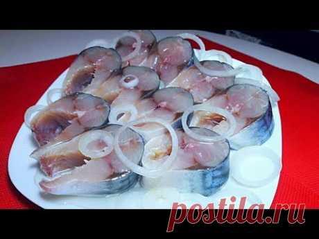 Скумбрия Малосольная за 2 часа Простой Рецепт Как Засолить Скумбрию mackerel salted