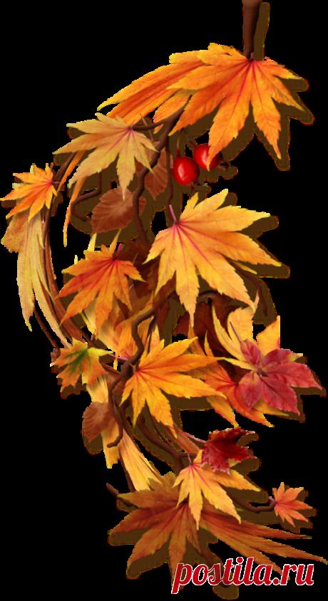 Autumn 377