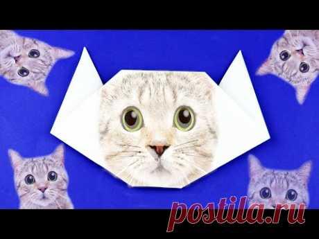 Как сделать кошку (котика) из бумаги легко и просто. Очень простое оригами. Пошаговая сборка