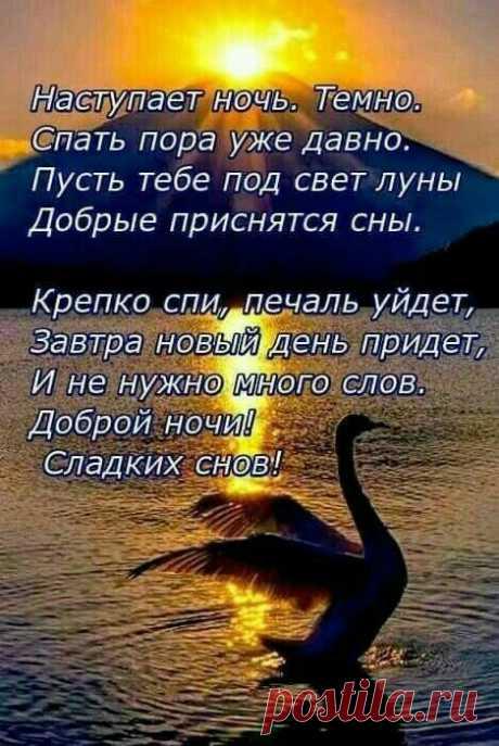 Добрых снов !