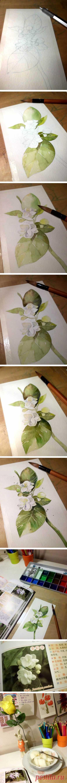 20 Нежные красочные картины Учебники Акварель Цветы в изображениях