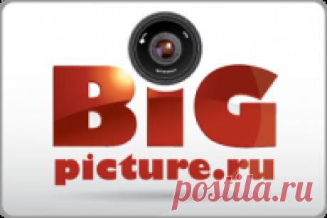 Bigpicture.ru