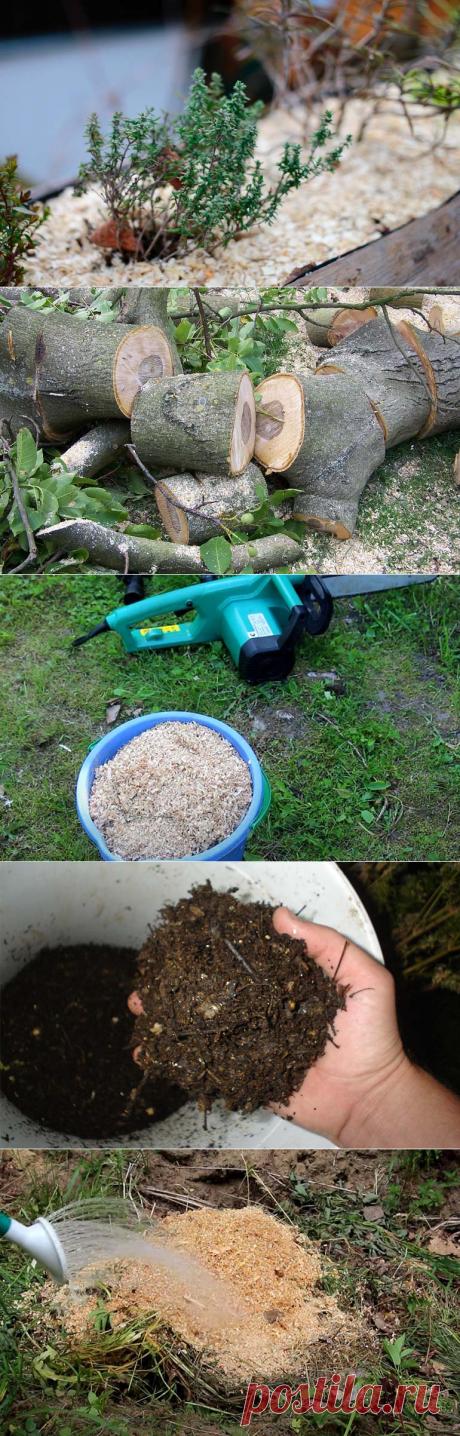 Применение опилок в огороде в саду, как удобрение и мульчи
