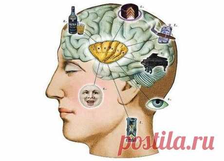 Несколько упражнений для мозга — немного странных, но очень полезных!
