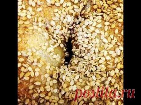 Лечебные свойства кунжута: семена кунжута