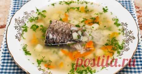 Уха из речной рыбы с картофелем | | Кухня Кухня Простой рецепт ухи из карася. У карася, как и у других речных рыбёшек, много костей. Но зато какой шикарный бульон даёт речная рыба! Поэтому и уха из речной рыбы получается очень вкусной, насыщенной,