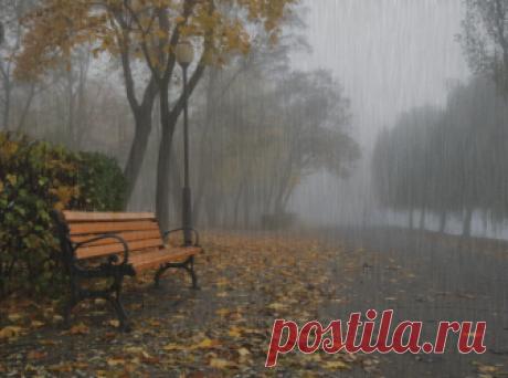 Осенний дождь                                  Небо за окнами серого цвета,    Дождь моросящий с утра. Где-то пропало чудесное лето,        Ведь оно было вчера...  Люди  озябшие ходят по лужам        Мокнут дома и кусты. По переулкам колючая стужа,         Ветер ломает зонты.  Вечером тёмным осенним и длинным         Что же бродить допоздна. Хочешь, с тобою вдвоем у камина           Сядем и выпьем вина.  Тихо уснул затуманенный город,      Мы лишь одни под дождём. А до вес...