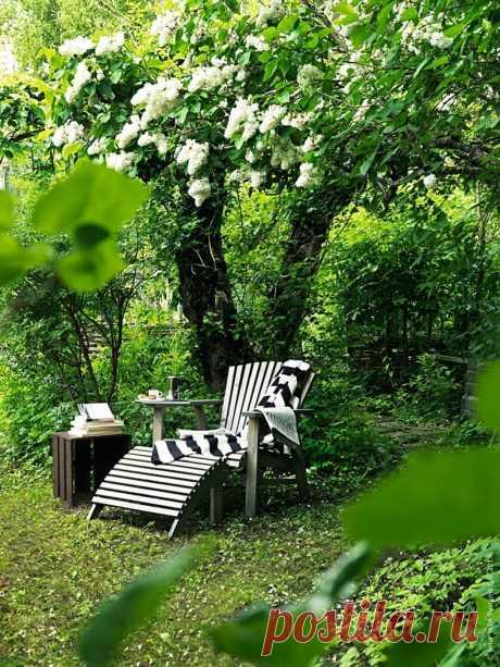 Лучший отдых — конечно, на даче! 25 уютных уголков на участке - Журнал для женщин Люди покупают дачу по разным причинам, но основные — это, конечно же, возможность иметь огород и свой уголок для отдыха на природе. Воссоединиться с природой и почувствовать себя по-настоящему расслабленным помогут обустроенные уютные зоны, предназначенные специально для этого. Комфортное кресло под деревом Интересная конструкция — кресло-качели Спрятанный в зелени уголок для отдыха Диван-кровать под зелёной […]