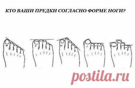 Форма ваших пальцев на ногах может раскрыть тайну откуда вы родом, но и это еще не все! Некоторые утверждают, что наши ноги могут пролить свет на наш характер. Мы не беремся выдавать это утверждение за истину, но всем известно, что генетика также влияют на личностные характеристики индивидуума.