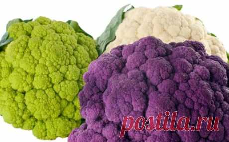 Салат из цветной капусты | Блог Жанны Никельс | Еда - как лекарство