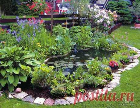 водоемы в саду.
