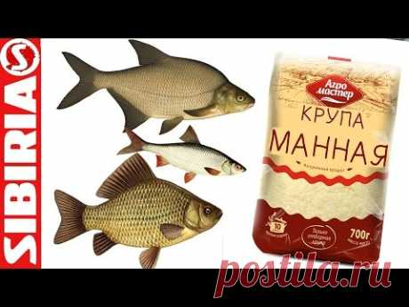 СУПЕР МАНКА для рыбалки Уловистая манка на карася, леща, сороги, плотвы и белой рыбы  Просто и бысто