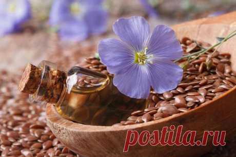 Semillas del lino — 7 + de las propiedades útiles y la regla de la recepción