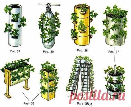 Вертикальные грядки помогают экономить место и выглядят аккуратно