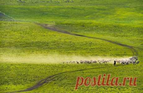Ковбои Шелкового пути: британская газета восхитилась снимками казахов - Путешествия по Казахстану и миру – интересные материалы для туристов | Tengrinews