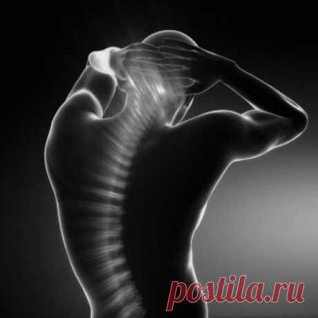 Дыхание позвоночным столбом: простое упражнение для здоровья спины Дыхание Позвоночным Столбом — это отличное упражнение, которое можно выполнять как сидя, так и стоя. Оно направленно на расслабление позвоночника и мышц спины и активирование Крестцового и Черепного Насосов, щитовидной железы и надпочечников...