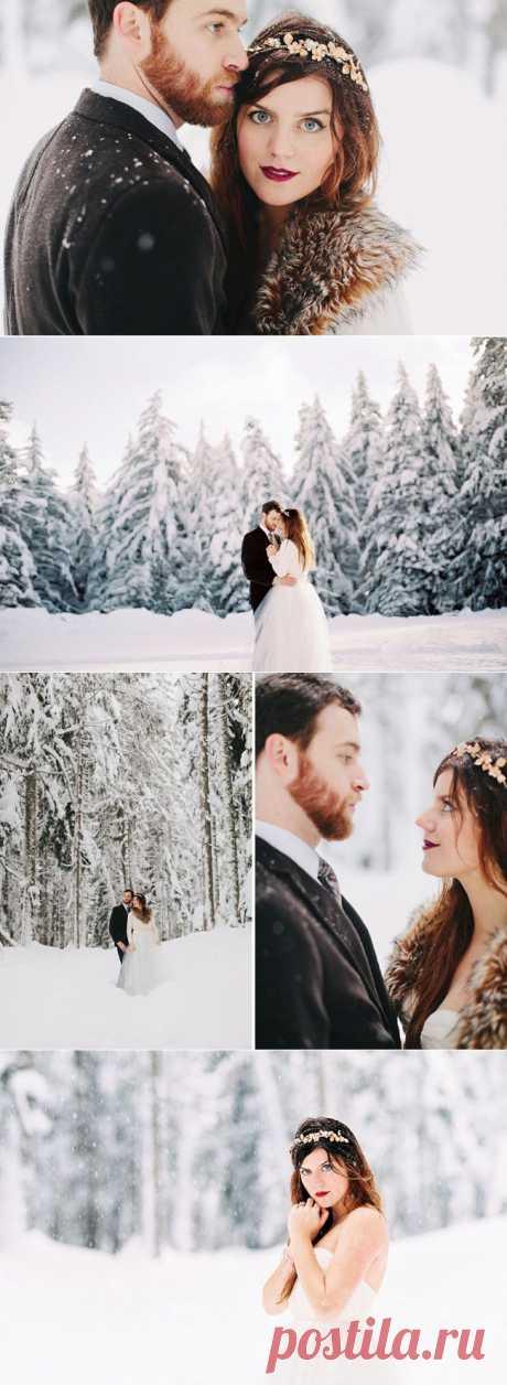 Реальная история: зимняя сказка в волшебном лесу   Идеи для моей свадьбы