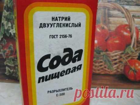 Мой лучший помощник на даче - сода! | Дачница | Яндекс Дзен