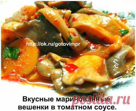 Вкусные маринованные вешенки в томатном соусе