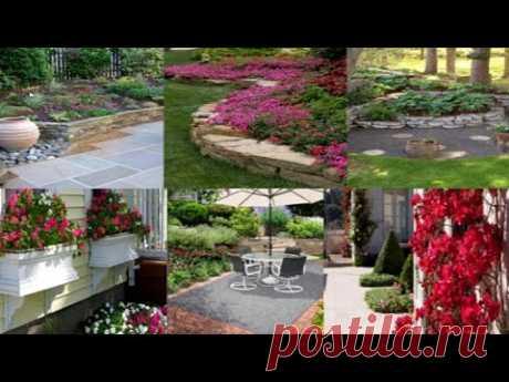 Красивая коллекция садового ландшафтного дизайна