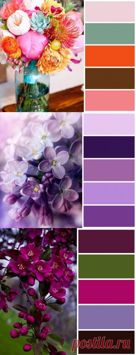 Цветовые сочетания для вдохновения — Красота и мода