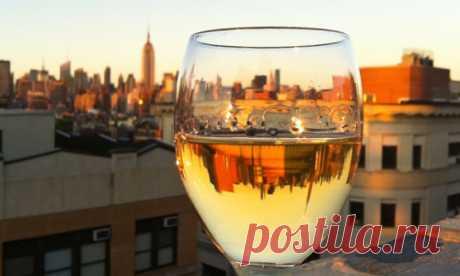 Что будет, если пить вино каждый день :: Санкт-Петербург :: RusNews
