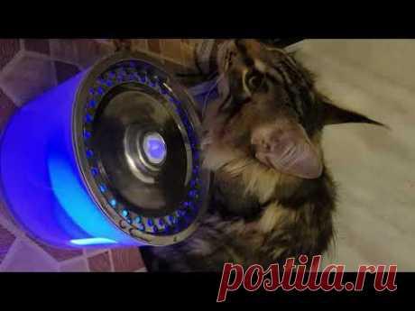 Много придумано всякой всячины для котиков и их владельцев. В этом видео вы увидите такое изобретение, как автопоилка для кошек и собак... Забавненько...