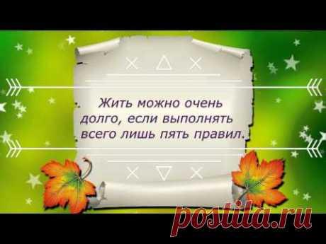 Рецепты долголетия Б.Болотова. Правило № 1.      ИЗМЕНЕНИЕ СООТНОШЕНИЯ МОЛОДЫХ И СТАРЫХ КЛЕТОК.