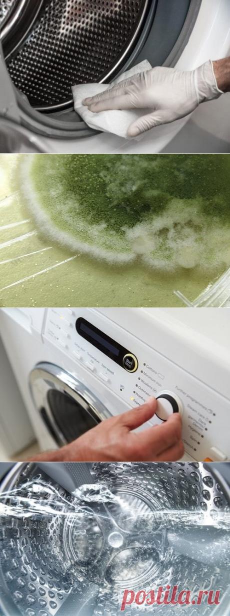 Стиральная машина – избавьтесь от плесени и грибков!