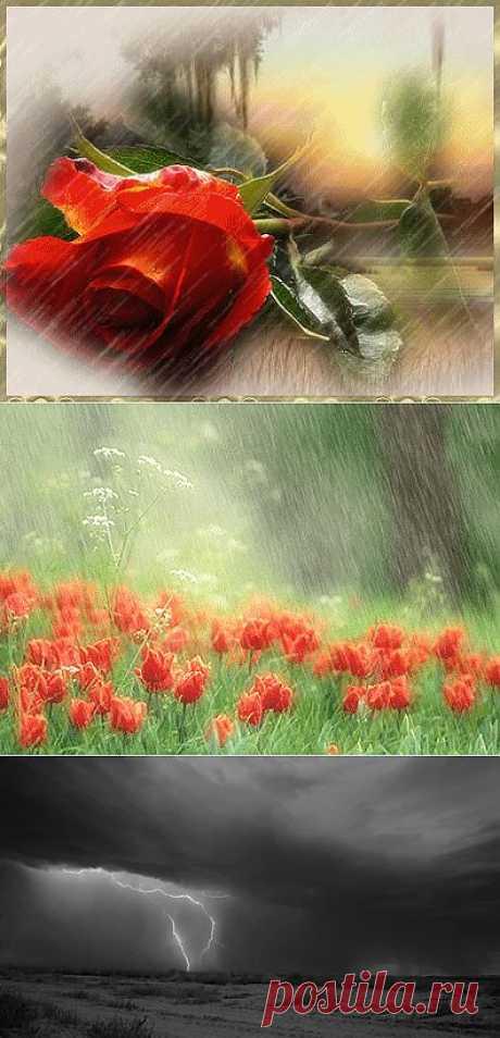 Анимации и красивые фотографии - дождь и капли, молнии и ливень