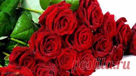 Эти розы для тебя. Красивая песня о любви