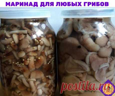 Ловите, хозяюшки вы мои!)Маринад для любых грибов. Нам потребуется   1 литр воды; 2 ст. л. сахара; 4 ч. л. соли; 3 шт. лаврового листа; 6 горошин душистого перца; 4 шт. гвоздики; 3 кусочка корицы (молотой ½ ч. л.) ; 3 ч. л. уксусной эссенции 70 %.  При использовании столового 5% уксуса необходимо взять 800 мл воды и 200 мл 5% уксуса. При использовании 9% уксуса - 890 мл воды и 110 мл 9% уксуса.  ПРИГОТОВЛЕНИЕ:  Вскипятить воду, добавить специи, проварить минутки три (уксус...