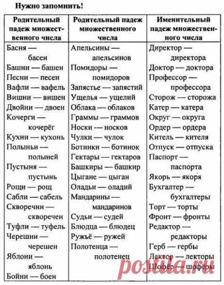 Нужная табличка | Культурный жабаян | Яндекс Дзен