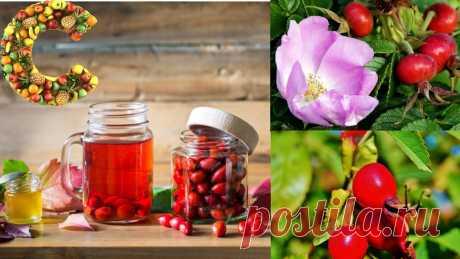 Отвар из шиповника. ТОП-5 полезных свойств и количество витамина С | Записки тощего обжоры | Яндекс Дзен