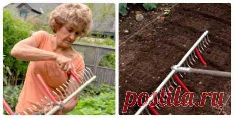 Народная смекалка - универсальные грабли) Знакомка моя иногда присылает фотографии, на которых показаны оригинальные приспособления для работы в огороде. Это она мне такие подсказки дает, чтобы работать было легче.   Грабли. Фотография с сайт…
