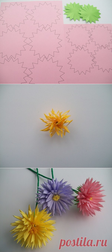 How to make paper asters with own hands