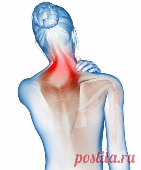 Какая связь между шеей и высоким давлением Избавиться от остеохандроза и тяжелой гипертонии, а также снизить риск развития инсульта и инфаркта можно, если регулярно и правильно разрабатывать шейные мышцы.